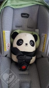 Evenflo LiteMax fits our armless panda well